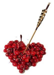 cranberries_1076675